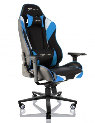 EWin Champion Series Ergonomic Computer Gaming Office Chair with Pillows-CPD
